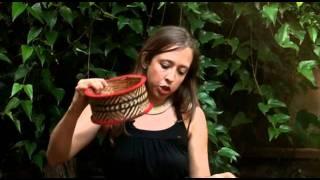 getlinkyoutube.com-historia - artesanatos indigenas da aldeia kamayura - a grande coroa.mp4