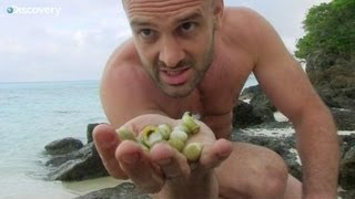 getlinkyoutube.com-Snails & Water - Ed Stafford: Naked and Marooned