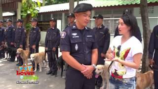 getlinkyoutube.com-Pet Lover by Jerhigh : สุนัขพระราชทาน