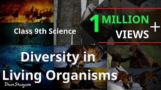 getlinkyoutube.com-Diversity in Living Organisms : CBSE Class 9 IX Science