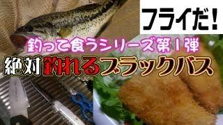 getlinkyoutube.com-絶対釣れるブラックバス(相模川水系 山梨県上野原市)Bass fishing