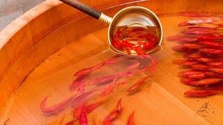 getlinkyoutube.com-Melukis Ikan 3D Fish Painting