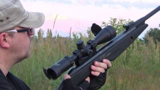 Gamo Whisper IGT review