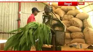 getlinkyoutube.com-712 : Sindhudurg : Sheli palan : Goat Farming by Vijay & Kavita Ghatge family