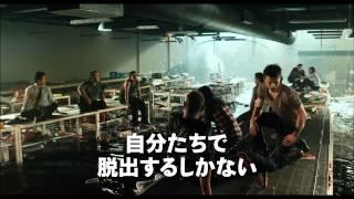 getlinkyoutube.com-スーパーにサメがやってきた!!―映画「パニック・マーケット 3D」2013年8月24日(土)公開!