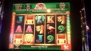getlinkyoutube.com-Great Africa Slot Machine Bonus(2)
