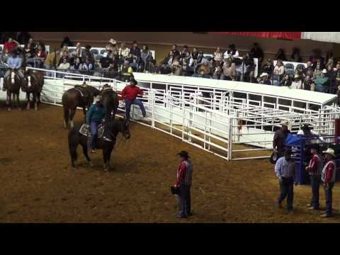 RODEO AMERICANO EN FORT WORTH STOCK SHOW 2015