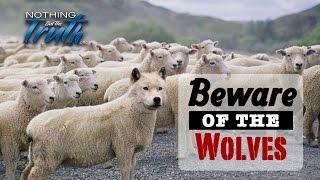 Beware of the Wolves in Sheep's Clothing