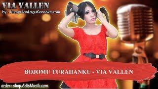 BOJOMU TURAHANKU - VIA VALLEN Karaoke