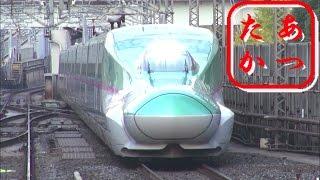 getlinkyoutube.com-東京駅を発着する新幹線  はやぶさ こまち つばさ やまびこ あさま とき たにがわ Japanese Bullet Train - Shinkansen