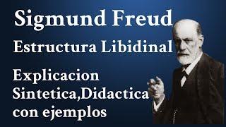Estructural Libidinal, Psicoanalisis y Análisis de la Psicología de las Organizaciones