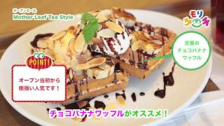 getlinkyoutube.com-[モリサーチ]Mother Leaf Tea Style レポーター:紗綾