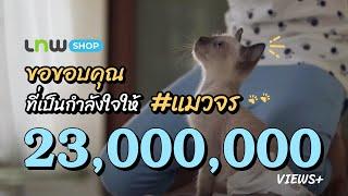 getlinkyoutube.com-มาดูสิ่งดีๆ ที่แม่ลูกคู่นี้ทำให้แมว