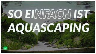 getlinkyoutube.com-Einrichten eines Aquascaping-Aquariums - Step-by-Step 2014 - GarnelenTv