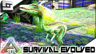 getlinkyoutube.com-ARK: Survival Evolved - COMPSOGNATHUS (COMPY) TAMING! S2E77 ( Gameplay )