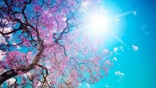 getlinkyoutube.com-Beautiful SPRING RELAXATION Lounge Del Mar Chill Out Mix