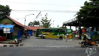 getlinkyoutube.com-Klakson Telolet Bus Sandat Bali dan Surya Bali