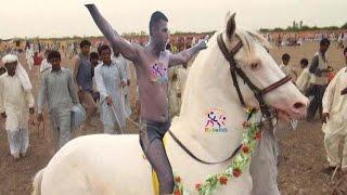getlinkyoutube.com-New Kabaddi Match 2016   All Pakistan open kabaddi match