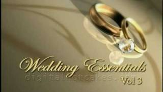 Wedding Animations, Intros, Transitions by Digital Hotcakes Vol 3
