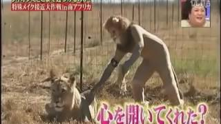 LION VS HUMAN - TV SHOW PROGRAM