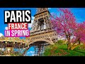 PARIS - FRANCE City Tour [Spring] | Paris in Springtime