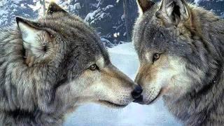 getlinkyoutube.com-Canto del lobo - Nahuatl