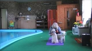 getlinkyoutube.com-Christine Danton - Training (trying to)
