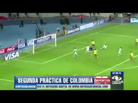 Seleccion colombia recuerda a andres escobar en 2
