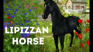 getlinkyoutube.com-Star Stable 一 Lipizzan horse