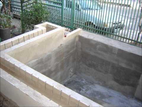 Videos youtube criadero o crianza de tilapia o mojarra for Mojarra tilapia criadero