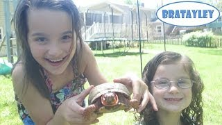 getlinkyoutube.com-The Turtle Hunters (WK 175.6) | Bratayley