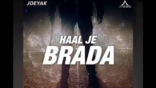 JoeyAK - Haal Je Brada (Official Audio)