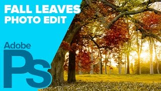 getlinkyoutube.com-How to Create Fall (Autumn) Leaves in Adobe Photoshop