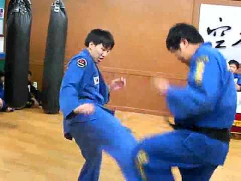 (79)Gongkwon Yusul  black belt  test (Korea jiu jitsu Hapkido)