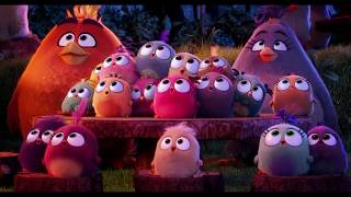 Angry Birds (2016)   Best Memorable Moments