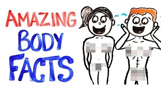 getlinkyoutube.com-Why Your Body Is AMAZING!