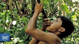 getlinkyoutube.com-Tribe hunting in the amazon jungle