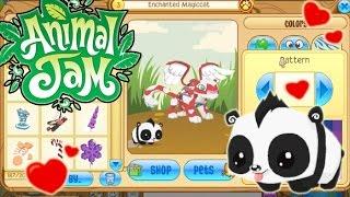 getlinkyoutube.com-Animal Jam - Adopting an adorable baby panda and Valentine's clothes!