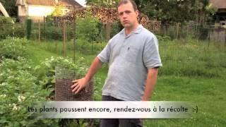 getlinkyoutube.com-Electroculture Tour de pommes de terre avec antenne type paratonnerre