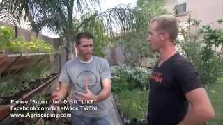 getlinkyoutube.com-Amazing Backyard Edible GARDEN - Gilbert, Arizona