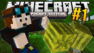 getlinkyoutube.com-Minecraft Pocket Edition | MELON JUNGLE!! | #1