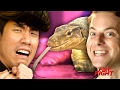 The Try Guys Prank Each Other // Presented By Warner Bros. Pictures Fist Fight