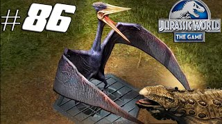 getlinkyoutube.com-Jurassic World The Game - Antarctopelta Tournament Zhejiangopterus Event  #86