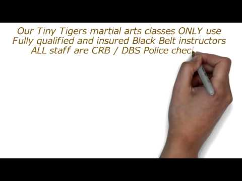 Tiny Tigers Classes at Hi Energy Martial Arts Academy