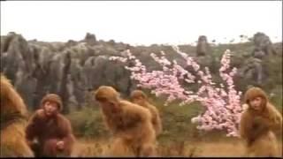 getlinkyoutube.com-Sun Wukong 2010 - Khmer Dubbed Chinese Movie P01