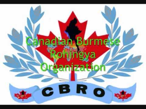 Rohingya Shobu's song #01by CBRO wmv نشيد برماوي مستر شوبو 1