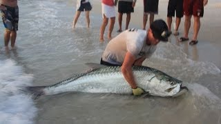 getlinkyoutube.com-Big Game Fishing From Shore