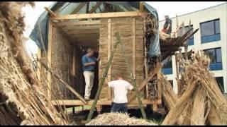 getlinkyoutube.com-Использование камыша, тростника в качестве биомассы