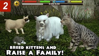 getlinkyoutube.com-Stray Cat Simulator - Part 2- By Gluten Free Games -Compatible with iPhone, iPad, and iPod touch