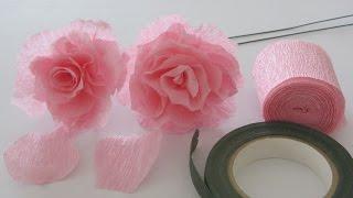 getlinkyoutube.com-How to Make a Crepe Paper Rose Craft Tutorial